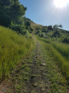 massive-hill